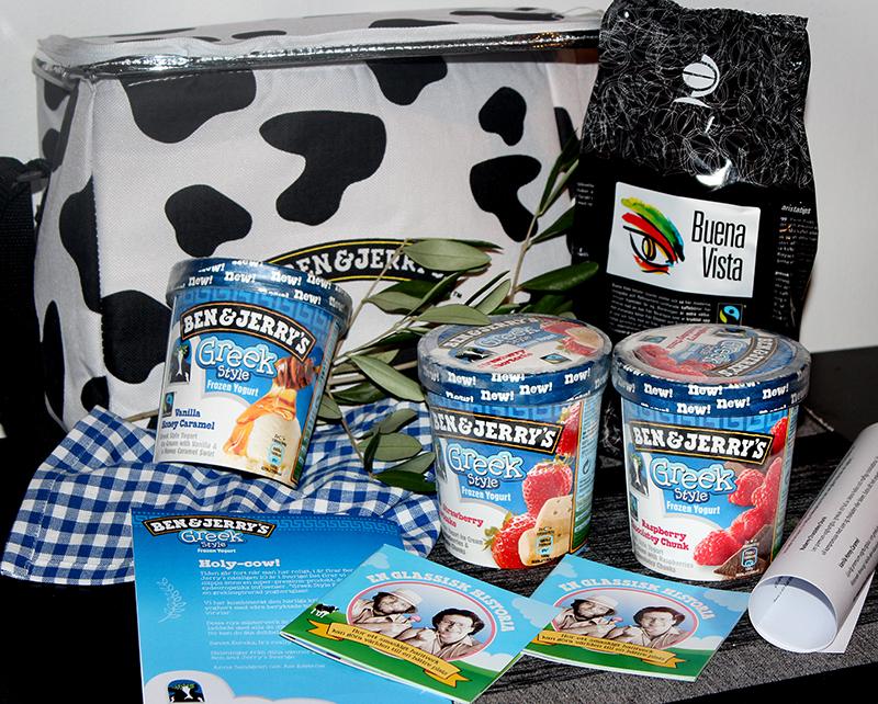 ben_jerrys_frozen_yoghurt