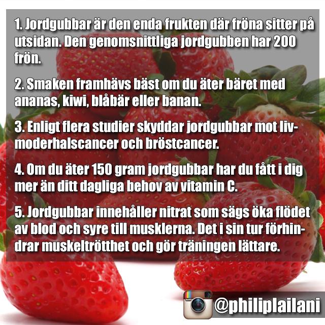 jordgubbe