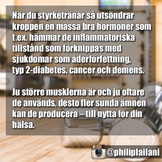 styrka11