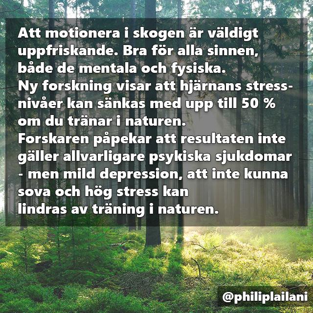 faktaruta_skogen